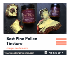 Where to buy best pine pollen tincture and Synthetic Supplement?